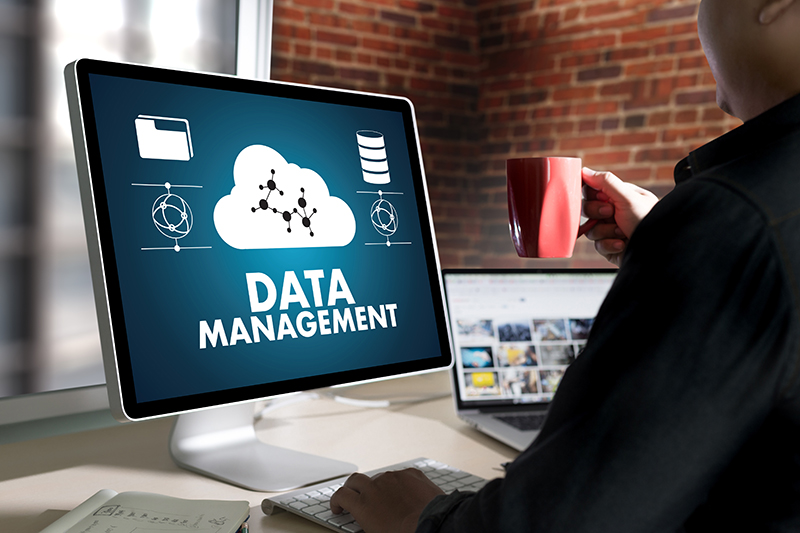 Database Development and Management Services