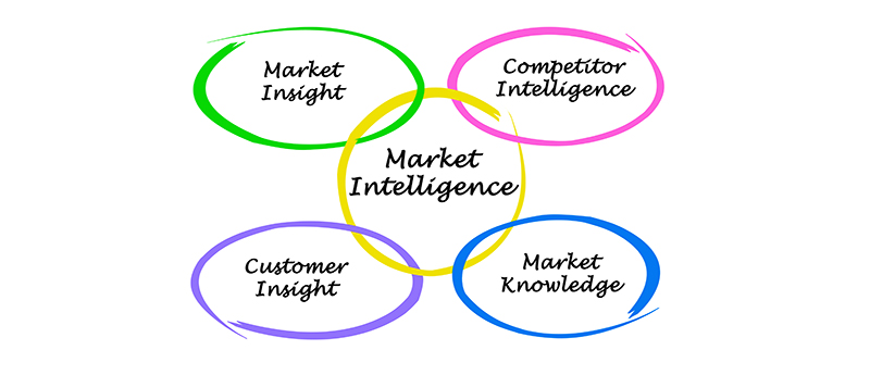 Market Intelligence Services for grow your business